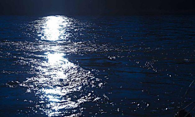Rauhnachtwanderung – Rückschau und Äste erneuern