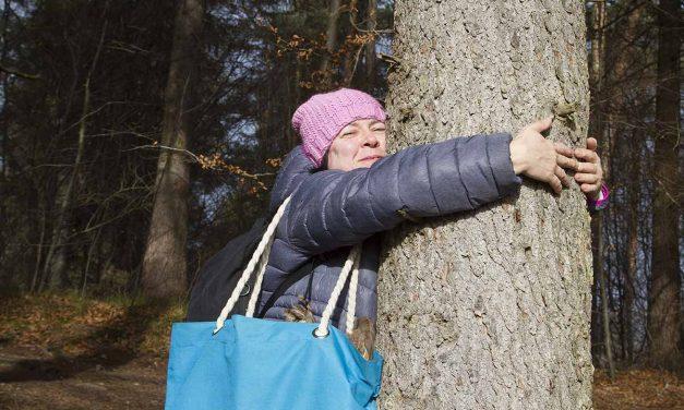Wege, Intuition und inneres Selbst – Wanderung Osterseen