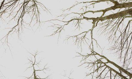 Rauhnachtwanderung Bereinigen, Korrigieren, eigene Quelle
