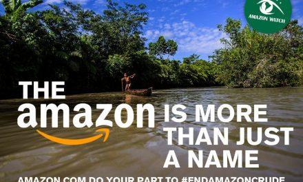 Helfen Sie dem Regenwald